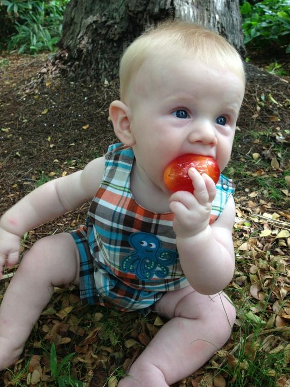 Tyler 6 Month Easter Egg Hunt